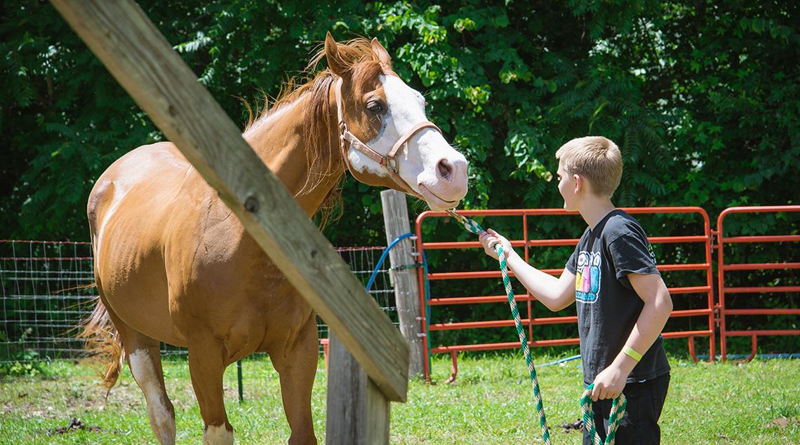 horsemanship Camp Buck Toms